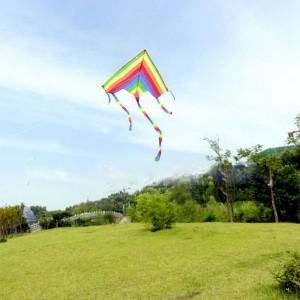 【購買】七彩風箏